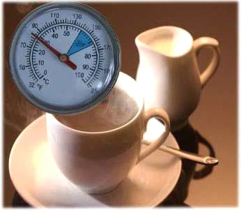 COFFE THERMOMETER - THERMOMETER